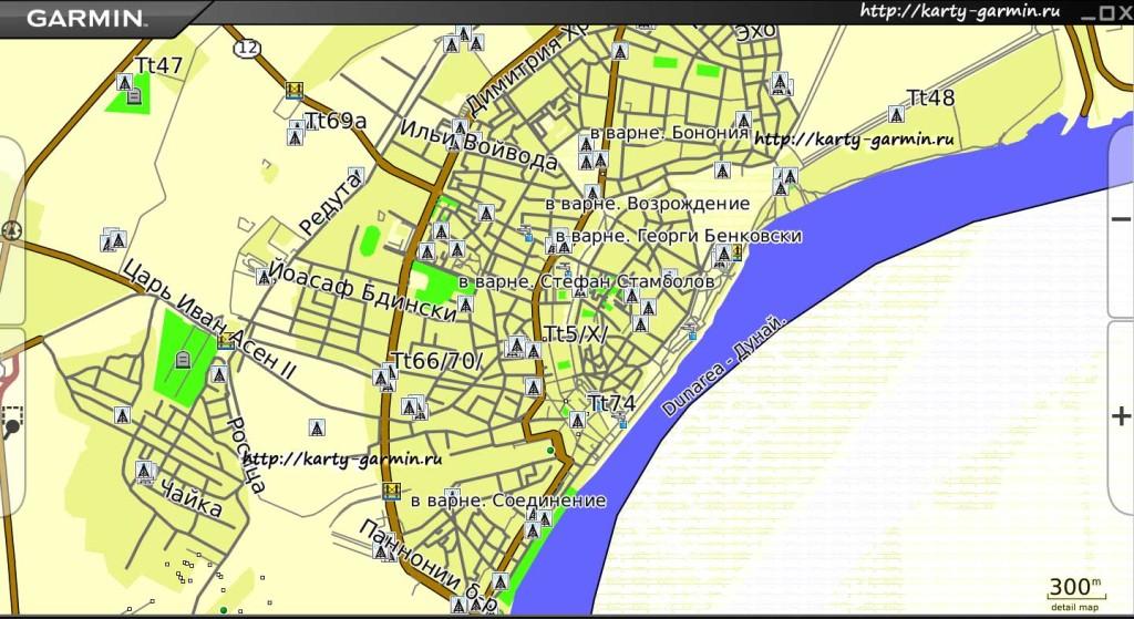 vidin-map-big